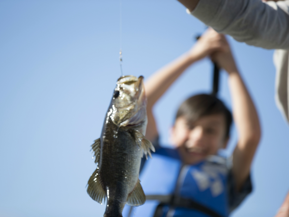 Find places to fish and Boat near you