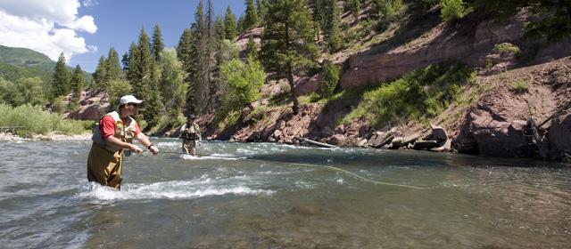 How to catch more trout for How much is a fishing license in new mexico