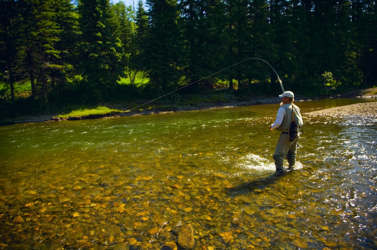 Fly casting for Fly fishing casting