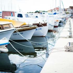 Boating License Expiration: Re-up Tips for Procrastinators