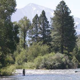 Montana Fly Fishing and Why It is Simply Perfect