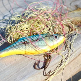 lure tangled in fishing line a common fishing mistake