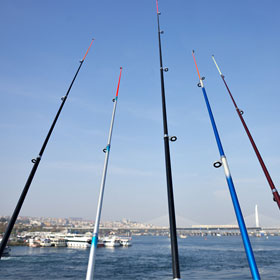 Buy the best fishing rod today