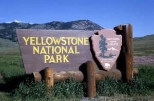 Summer Fun at Yellowstone National Park