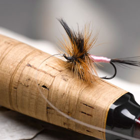 fly fishing stonfocom - 800×612