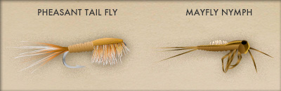 starter fishing flies - take me fishing, Fly Fishing Bait