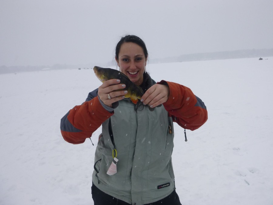 ice-fishing-perch1-900x675