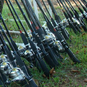 numerous fishing rods and reels on a stand
