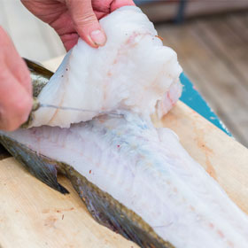 How to Fillet a Fish Step by Step