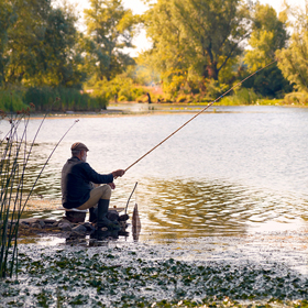 How to Fish in Freshwater Fish in New Jersey