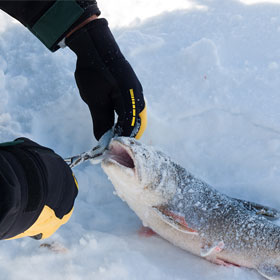 Tips on Ice Fishing for Trout