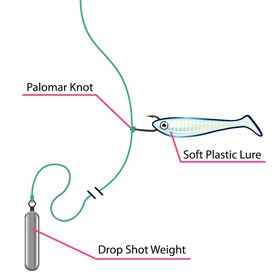 Learn how to tie a Palomar knot
