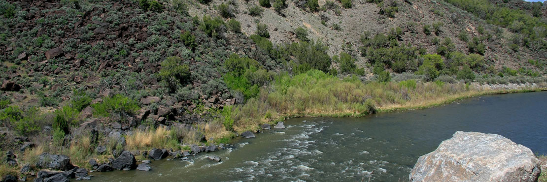 Learn about new mexico fishing boating for Where to get a fishing license near me