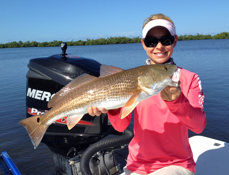 redfish-sept-900x685.jpg