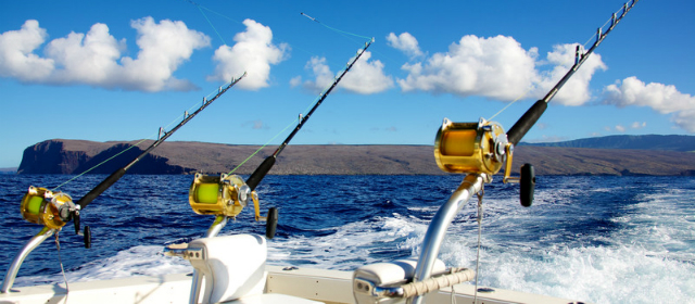 Saltwater Fishing Tackle for Boat or Shore