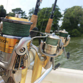 Freshwater Fishing Reels Guide