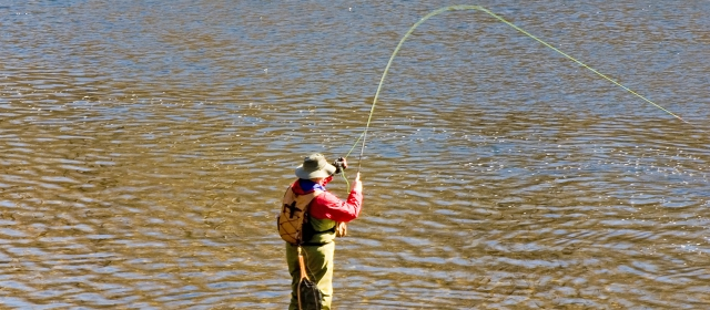 Chicago fly fishing where to go in chicago what to bring for Where to buy fishing license near me