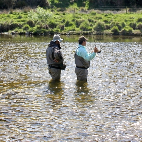 Dry Fly Fishing Tips to Use This Fall