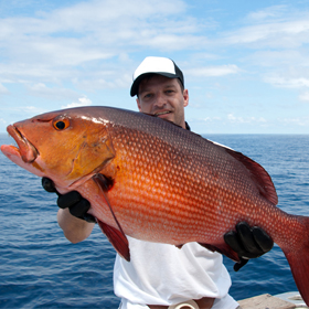 Learn about the Red Snapper and Red Drum Conservation Project