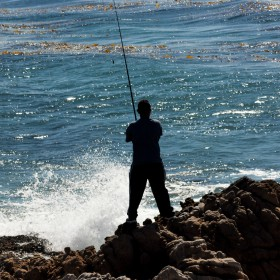 Fishing in Los Angeles: Best Freshwater & Saltwater Spots