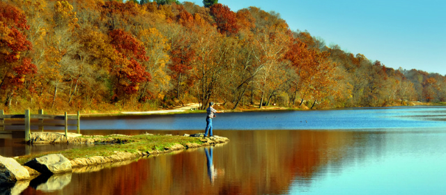 How to protect spawning fish in the fall for New york state fishing license online