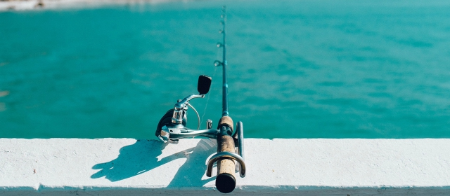 San diego fishing trips where to fish by land or sea for Az game and fish boat registration