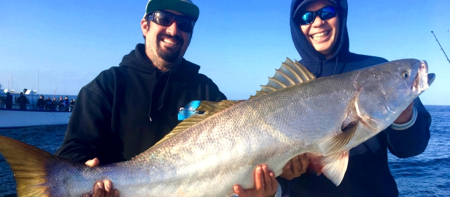 Dana point fishing species to target for Where to buy fishing license near me