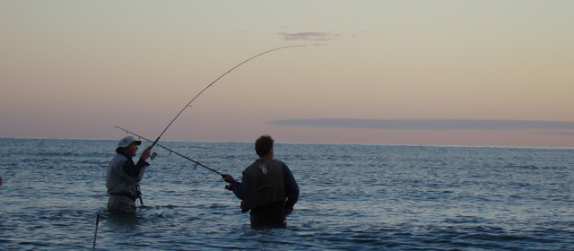 Your top new york fishing license options for Where to buy fishing license near me
