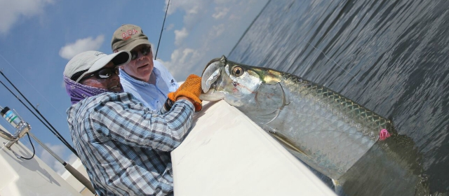 4 benefits of booking fishing guides and charters for Where to buy fishing license near me