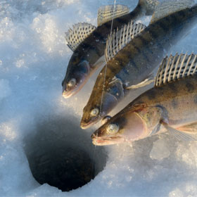 Reminders for Ice Fishing Ponds
