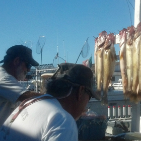 Tips for Charter Boat Fishing Trip Fun