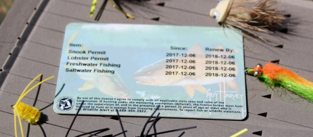 5 reasons to get your fishing license online for Where to buy fishing license near me