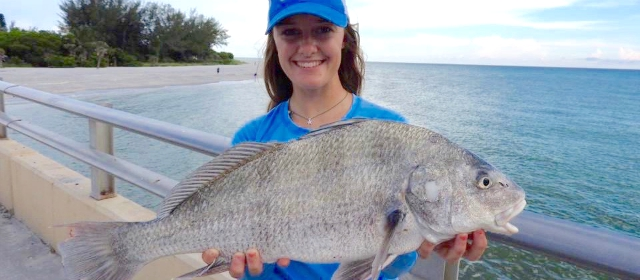 5 miami fishing piers to visit this year for Where to buy fishing license near me
