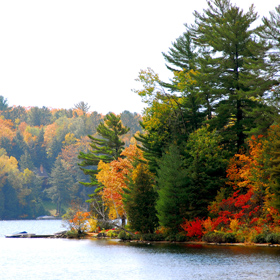 8 Top Fall Fishing Spots Across the Country