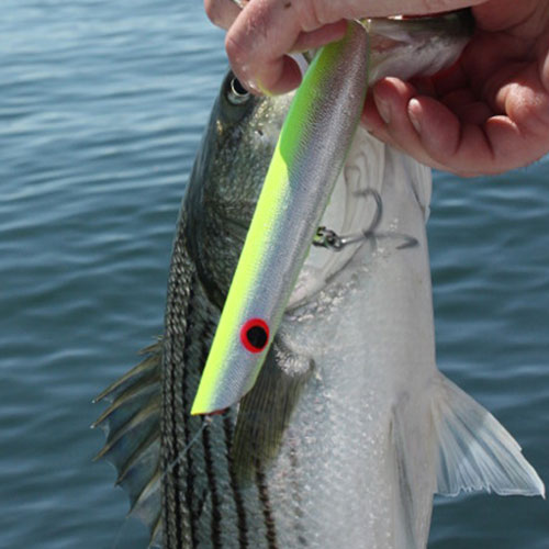 5 Injuries Requiring a Fishing First Aid Kit