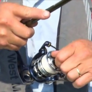 How to Reel in Fish
