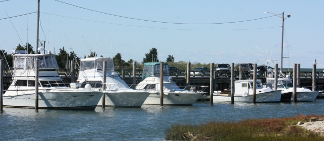 4 Tips to Determine a Safe Wind Speed for Boating