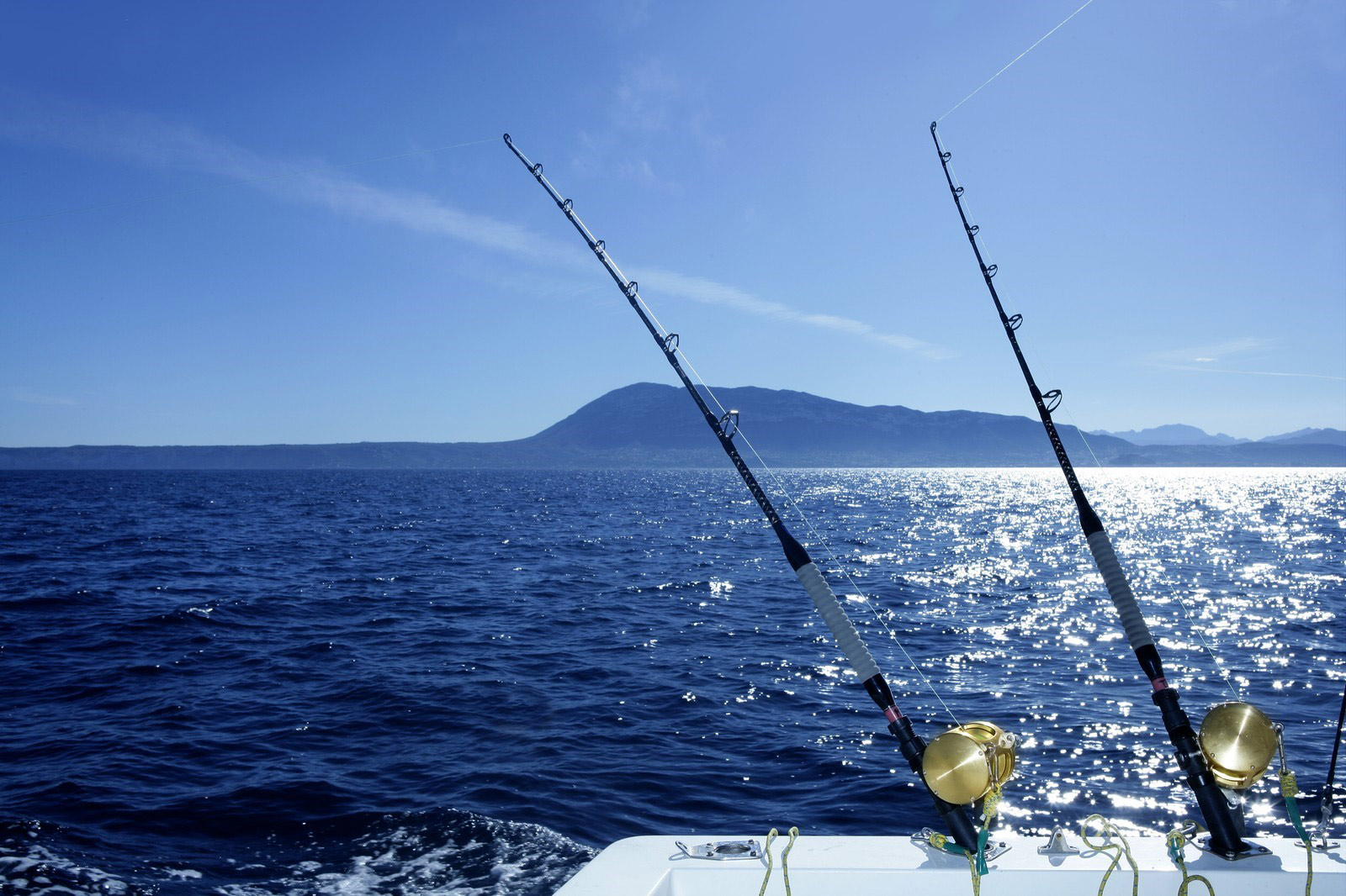 saltwater fishing pictures