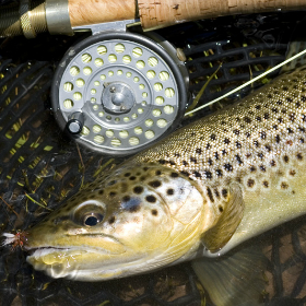 5 Fly Casting Tips for Quick Improvement
