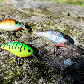 How to Fish With Crankbait Lures for Bass