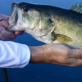 5 Summer Bass Fishing Tricks To Use Now