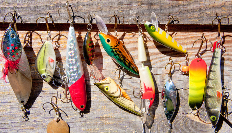 Learn about different types of salmon fishing lures here
