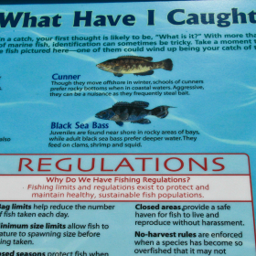 Sign with information about overfishing