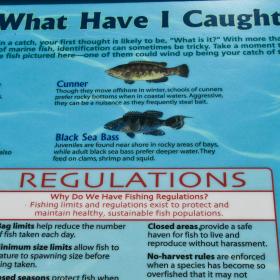 Fishing boating resources start fishing today take me for Louisiana saltwater fishing license