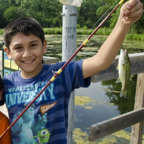 5 Popular State Parks in Minnesota to go fishing