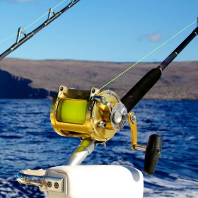 Fishing boating resources start fishing today for Nys saltwater fishing permit