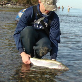 Choosing Fall Steelhead Techniques