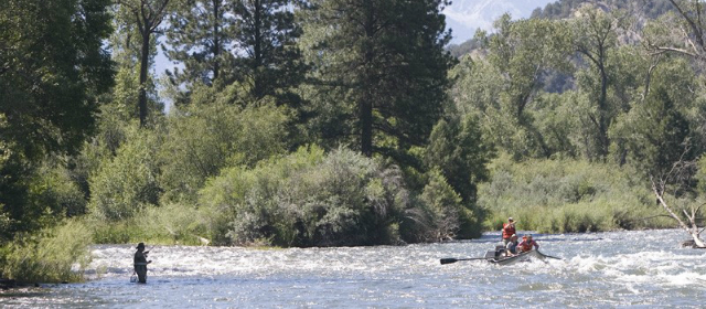 Montana fly fishing for Mt fishing license
