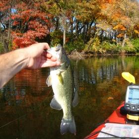 Minnesota Fishing by Kayak or Canoe