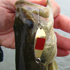 Fishing lure crafted for family fishing trip